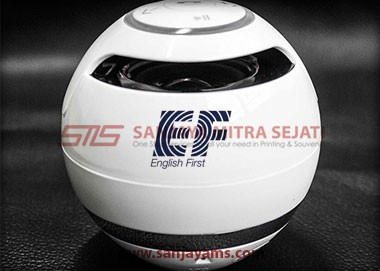 Bluetooth Speaker (BS01)