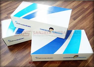 Kotak Tissue Promosi
