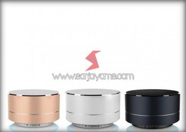Bluetooth Speaker (BS06)